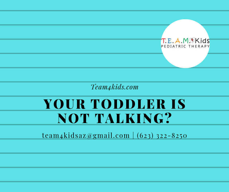 Your Toddler is not Talking – Now What?