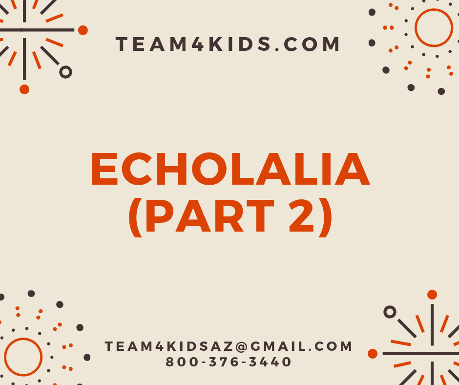 Echolalia (Part 2) – What To Do About It?