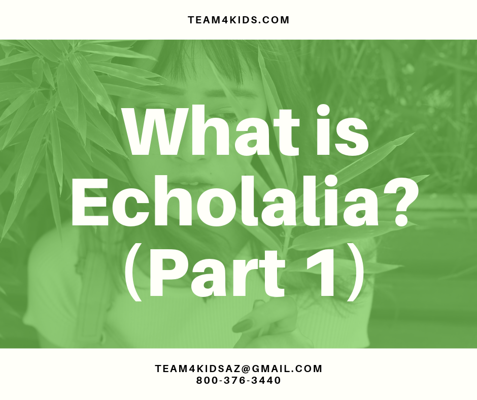 What is Echolalia? (Part 1)