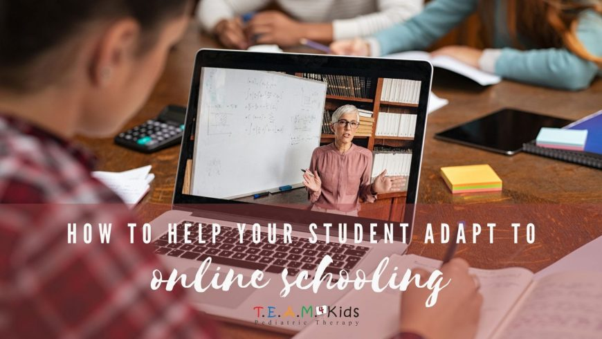 How to Help Your Student Adapt to Online Schooling