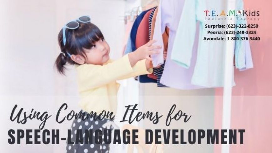 Using Common Items for Speech-Language Development